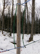 Double pipe sap ladder