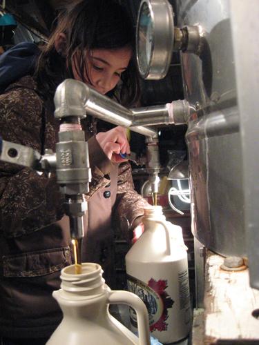 Bottling Maple Syrup