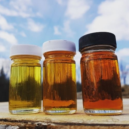Three grades of maple syrup